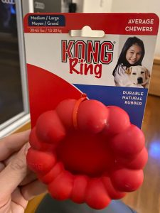 labradoodle puppy chew toy kong best
