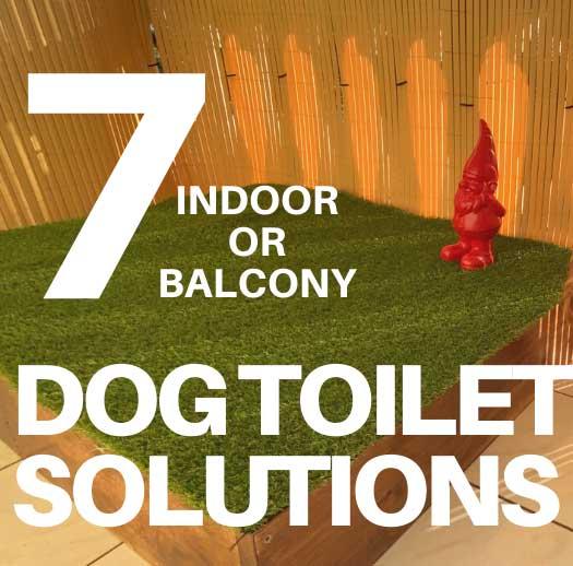 7 Best DIY Dog Toilet Solutions (Indoor or Porch Potty)