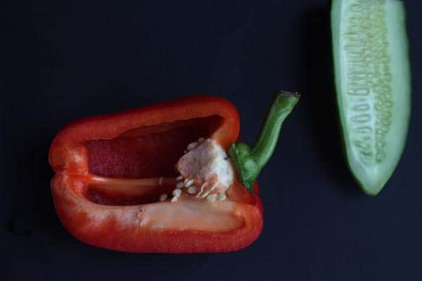 Can Dogs Have Bell Peppers? Complete Guide Best Reasons To Feed Capsicum To Your Puppy  1