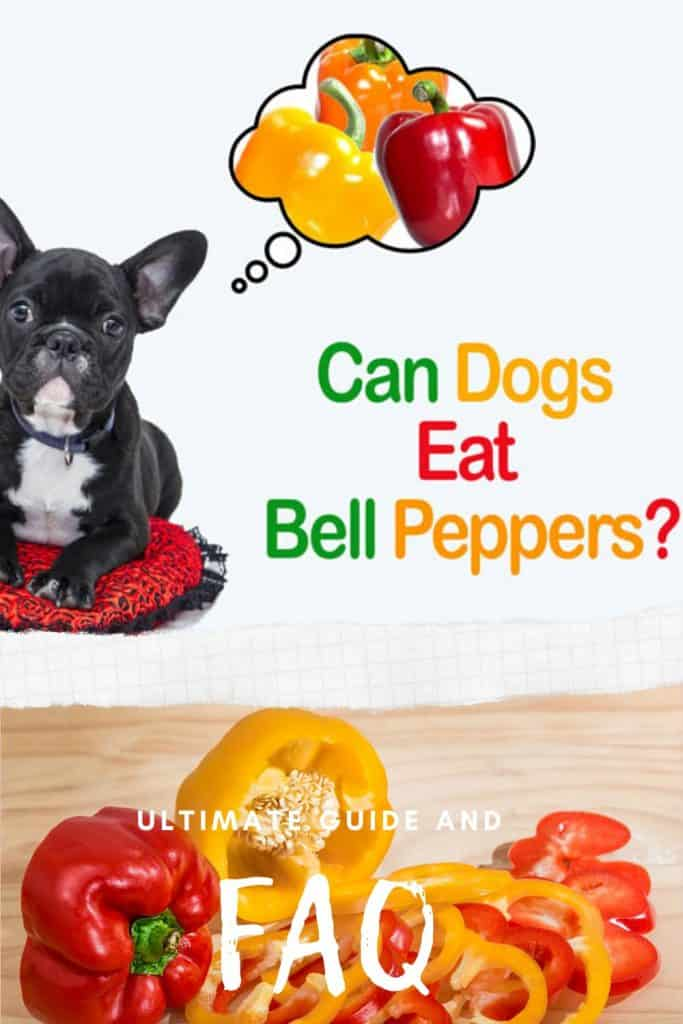 can dogs eat orange bell peppers