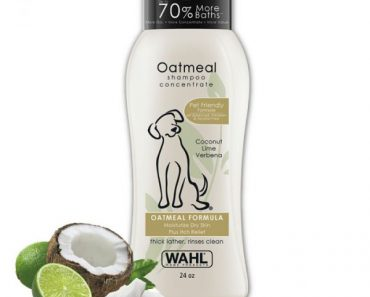 wall oatmeal dog shampoo review