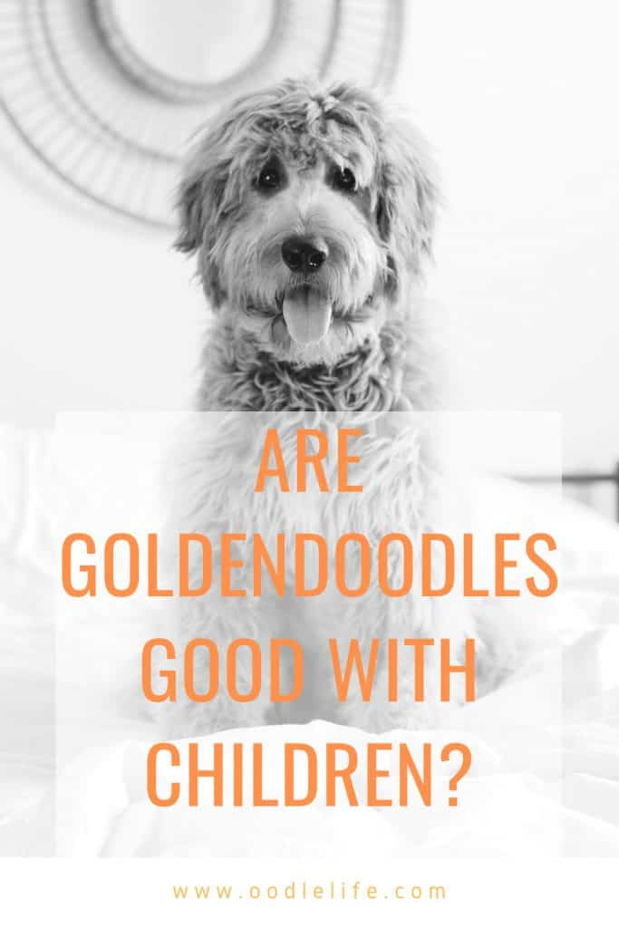 are goldendoodles good with kids