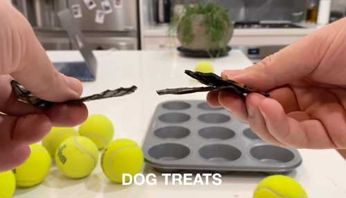 Muffin Tin Game for Dogs - Simple Scent Mental Enrichment Game How To Play 2
