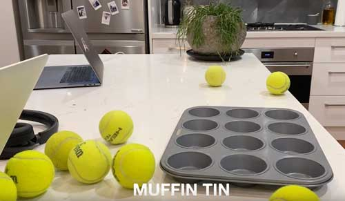 Muffin Tin Game for Dogs - Simple Scent Mental Enrichment Game How To Play 1