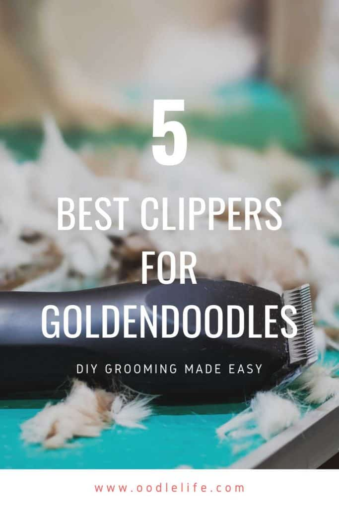 best clippers for goldendoodle