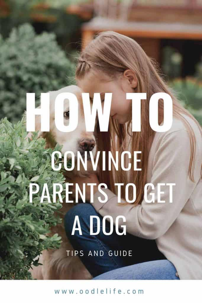 how to convince your parents to get a dog