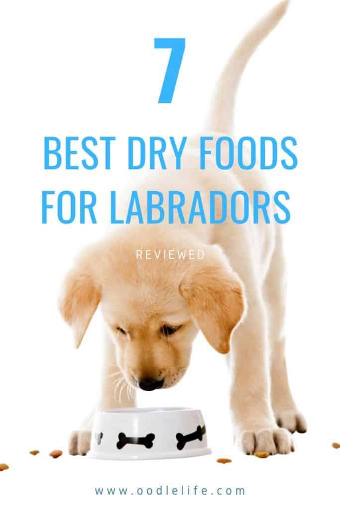best dry food for Labrador