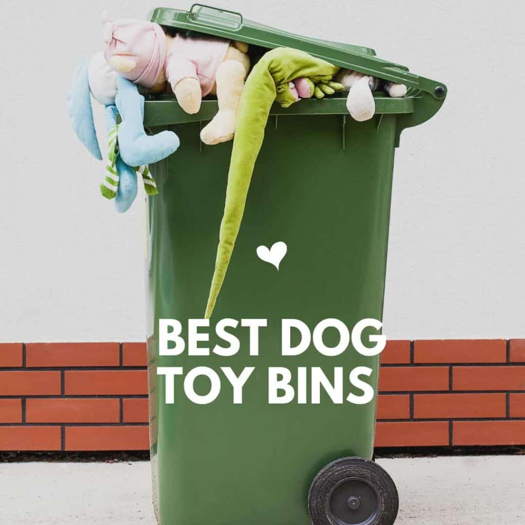 dog toy bins