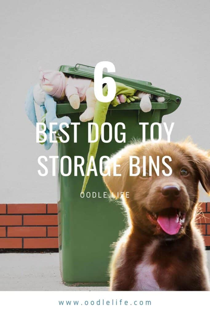 best dog toy storage bin