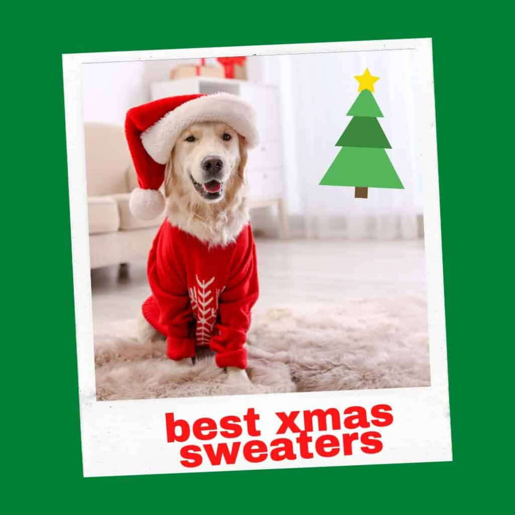 best large dog xmas sweaters