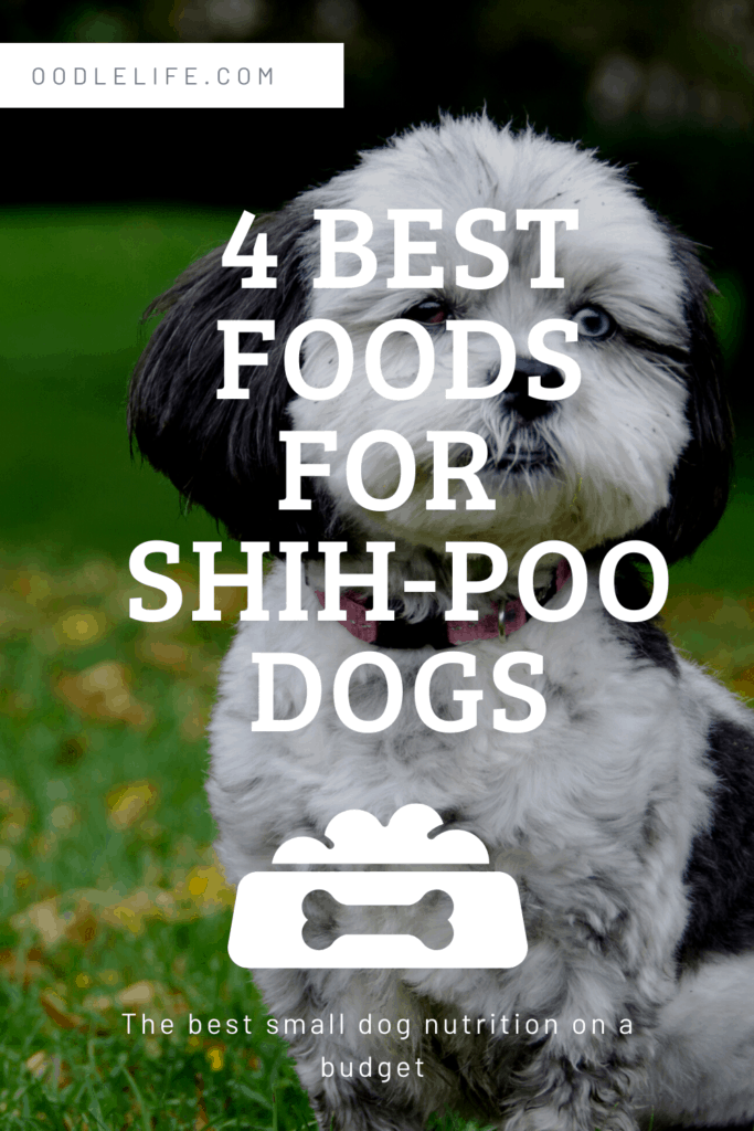 the best dog food for shih poo puppies and dogs