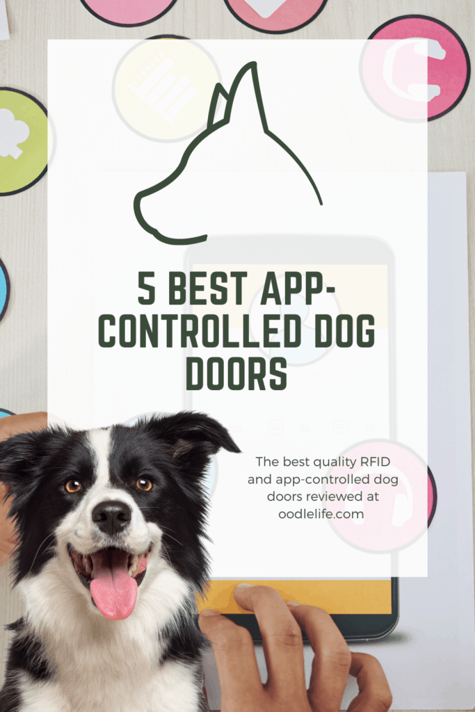 best app-controlled dog door