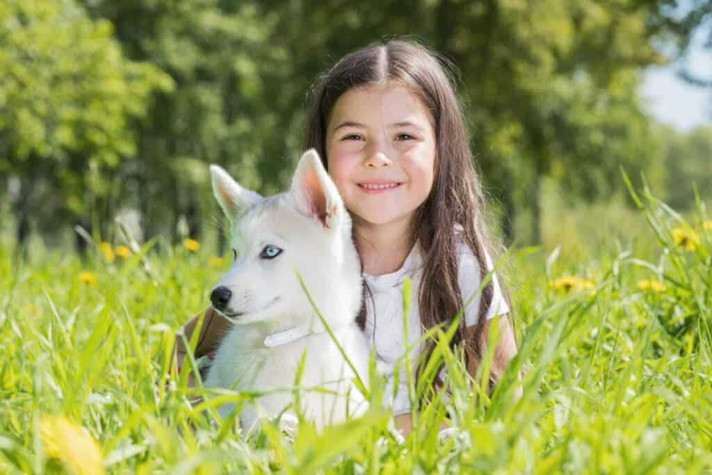 little girl and a husky
