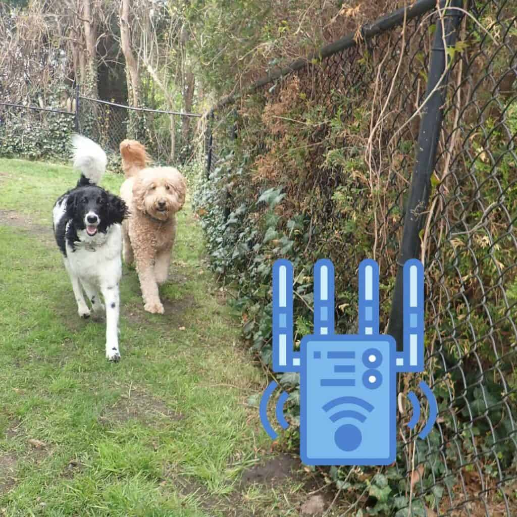 best wireless fence for goldendoodles