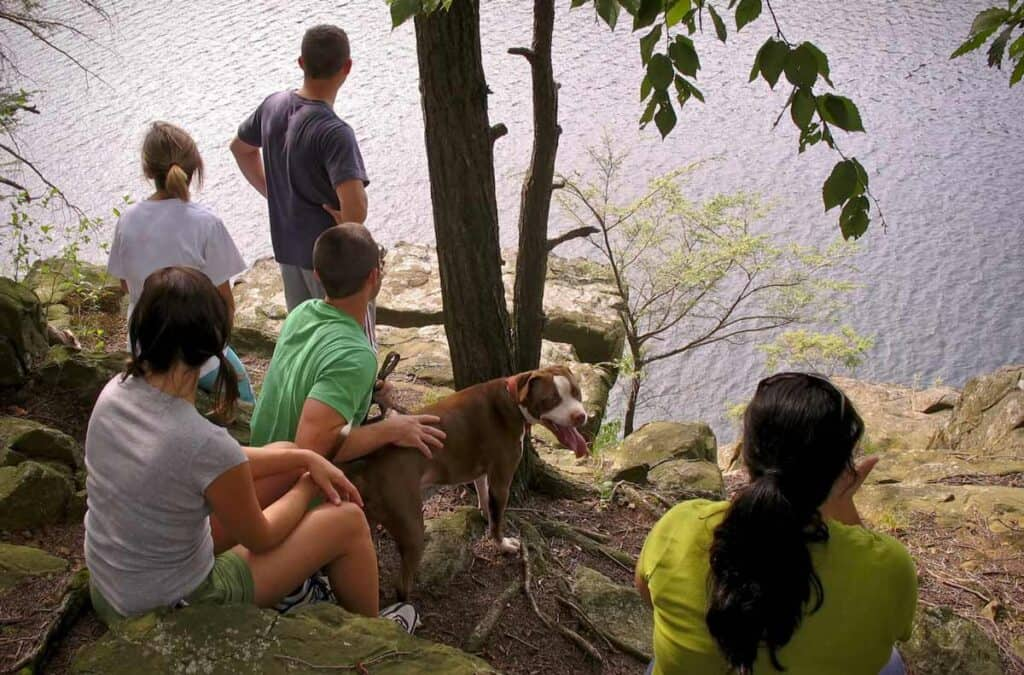 a dog and some humans on a hike to the lake
