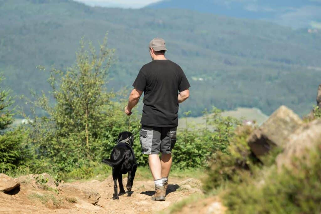 hiking hills with a dog and a man