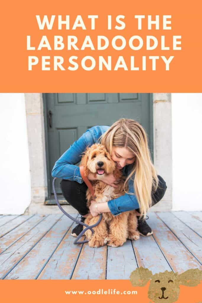 what is the personality of a labradoodle