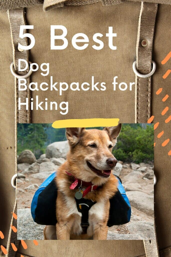info graphic about the 5 best dog backbacks for hiking