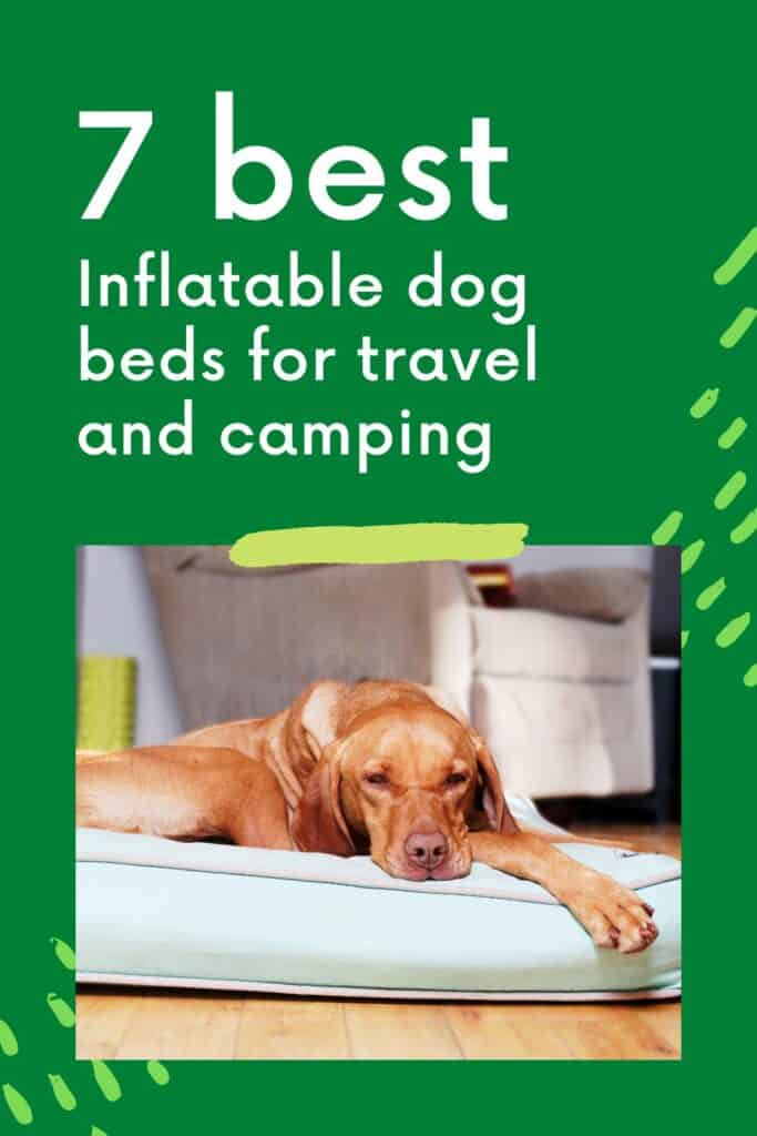 best inflatable dog beds for travel