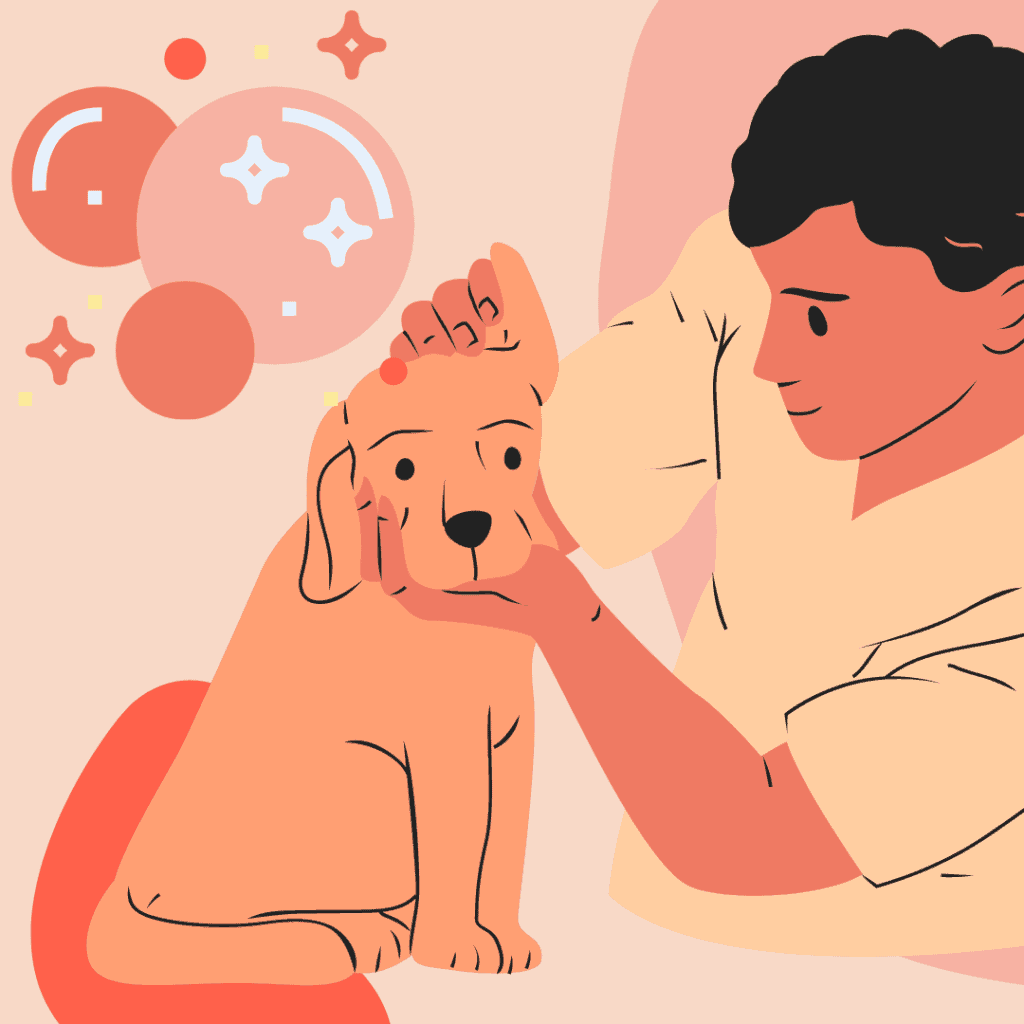 diagram of a man cleaning the ear of a Goldendoodle