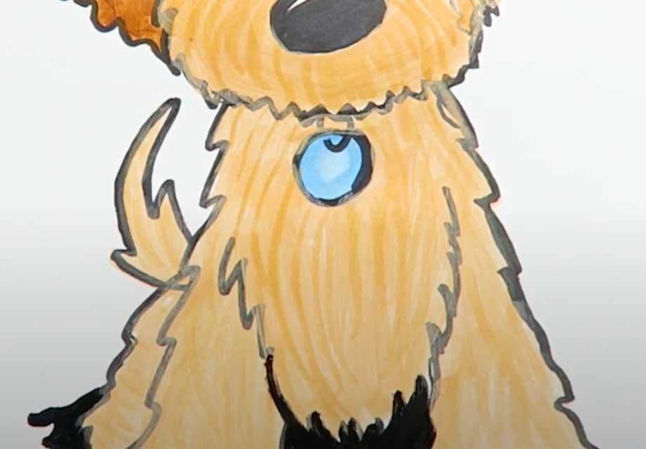 blue collar on a Goldendoodle puppy