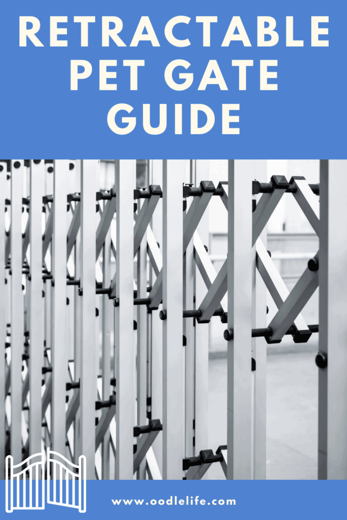 guide to retractable pet gates
