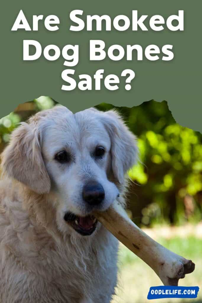 are smoked dog bones safe