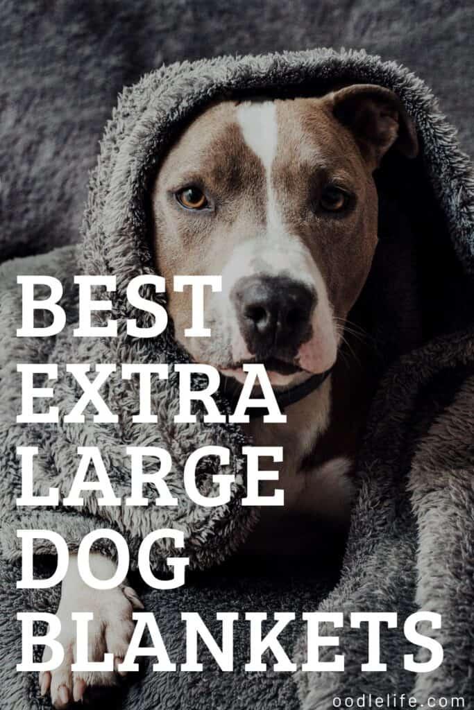 best extra large dog blankets