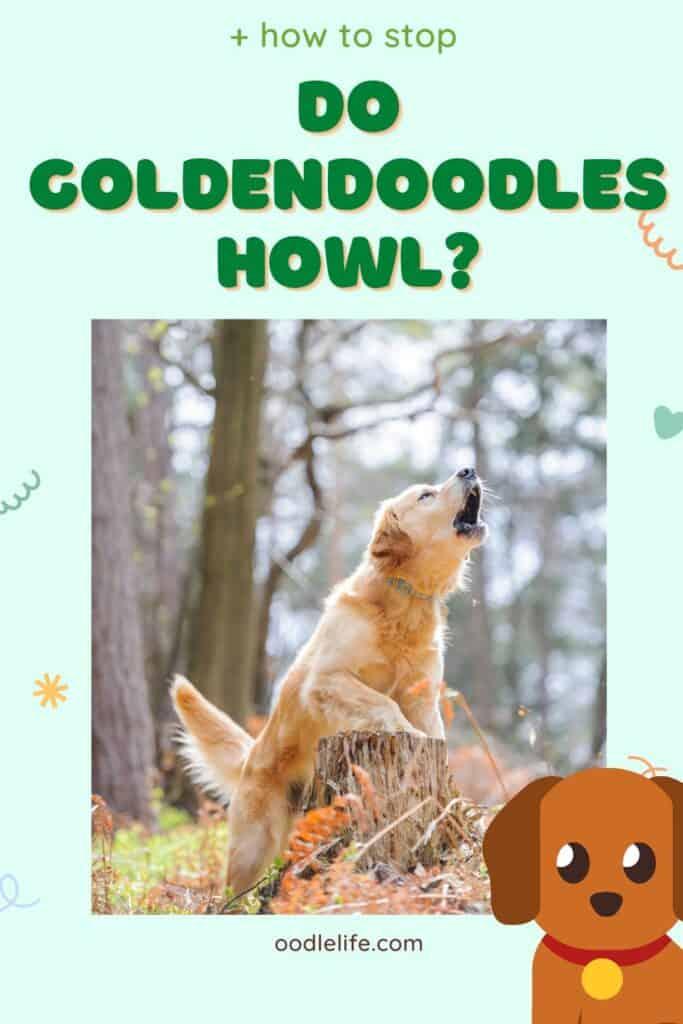 can Goldendoodles howl