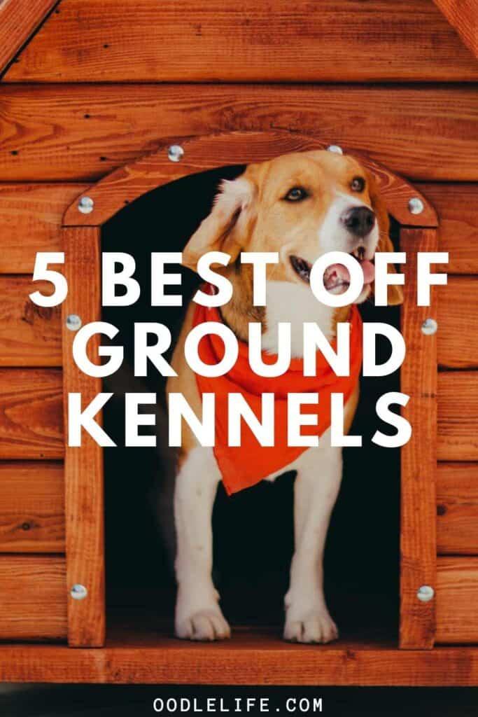 best off ground dog kennel