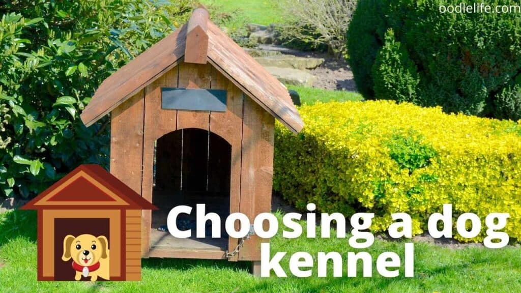 a wooden dog kennel