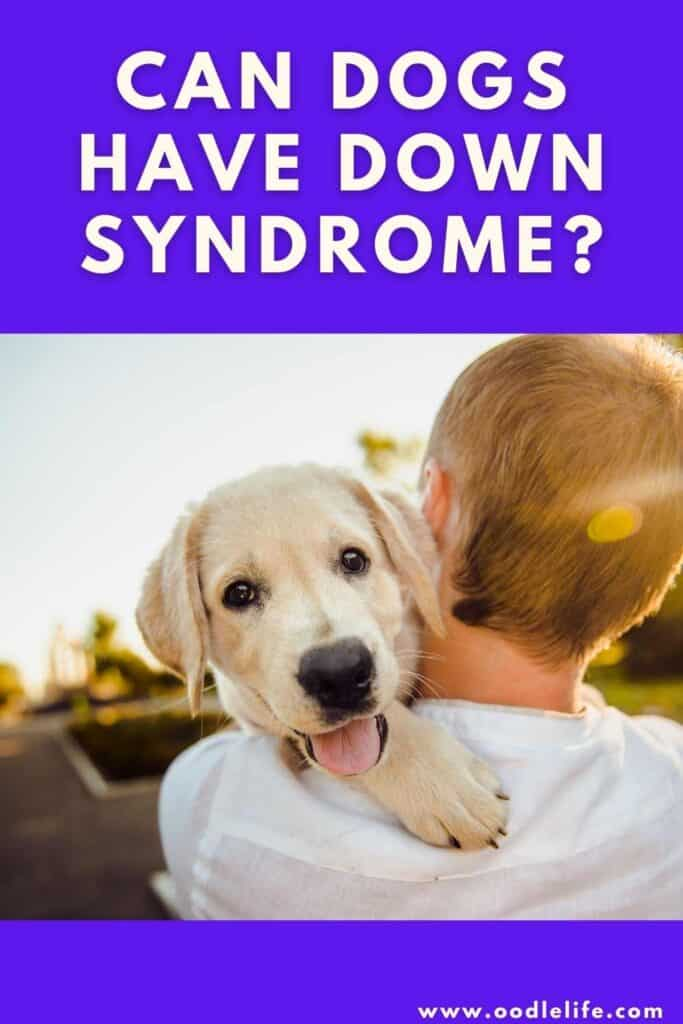 can dogs have Down syndrome