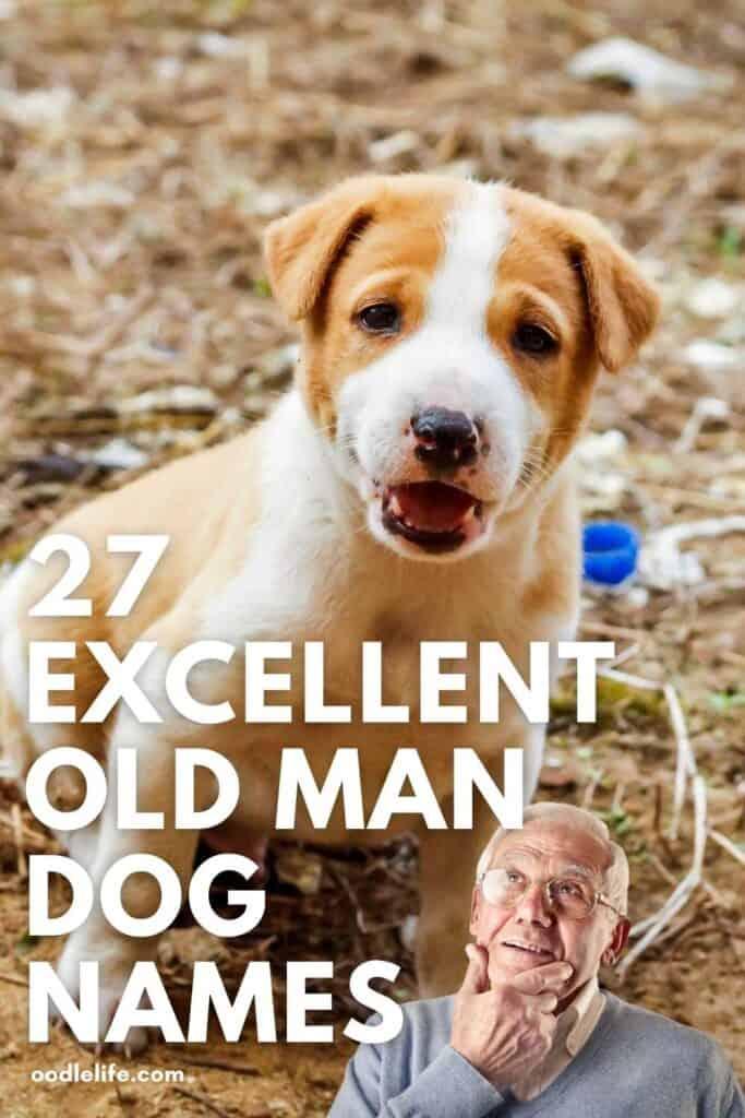 27 good old man dog names Pinterest pin