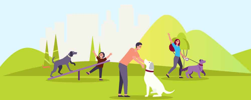 Dog owners training their dogs in the park