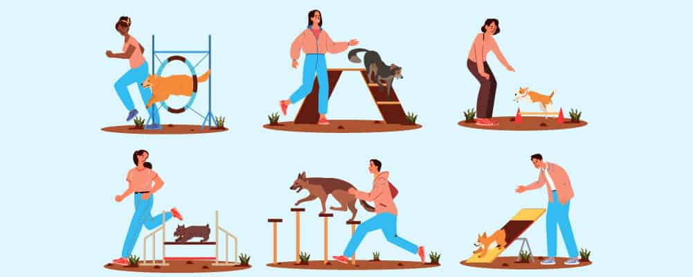 Dog trainers showing obstacle course for training your puppy