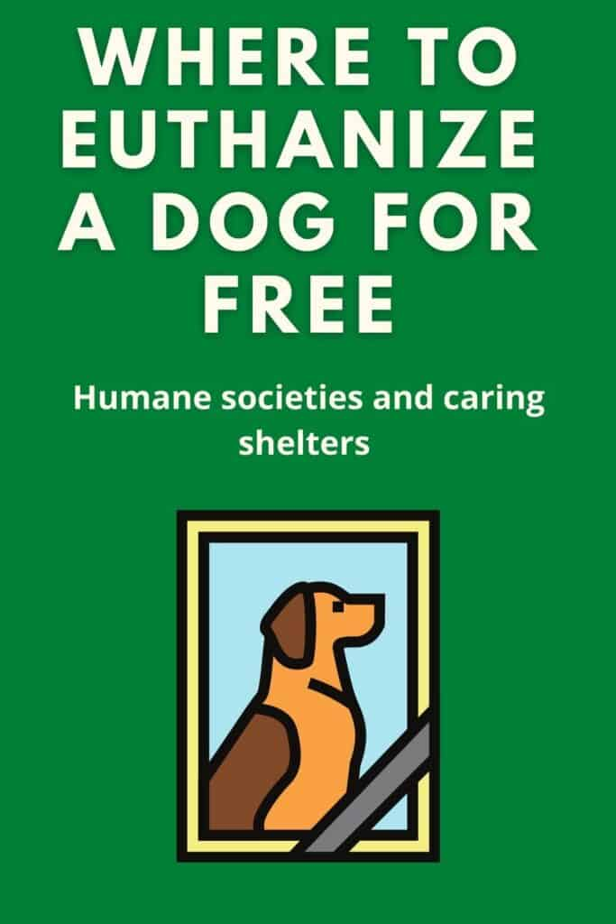 where to euthanize a dog for free