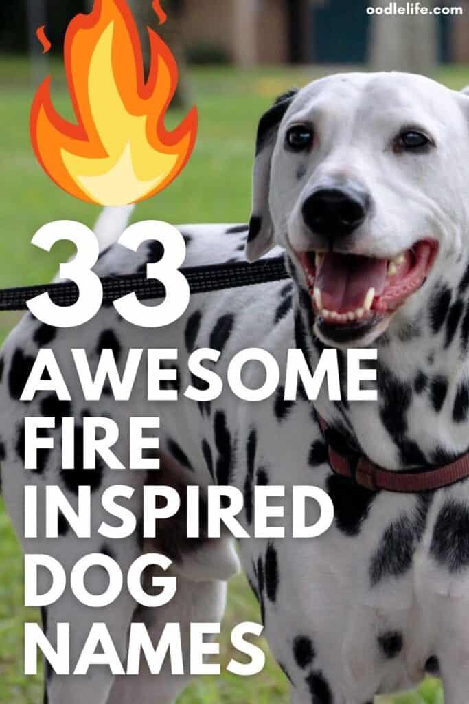 best fire dog names