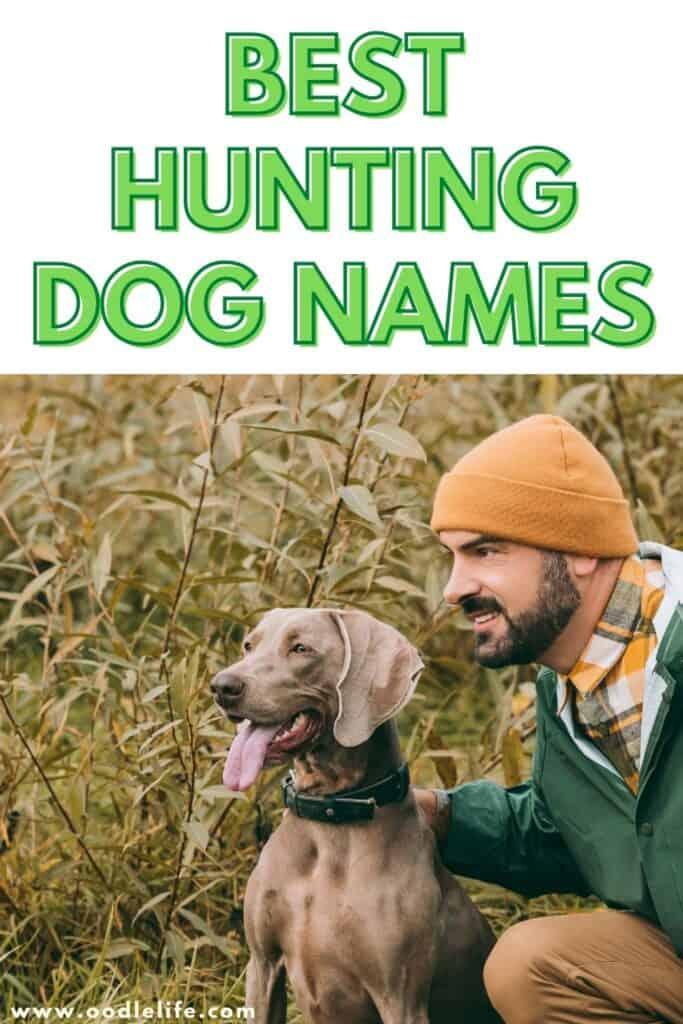 best hunting dog names
