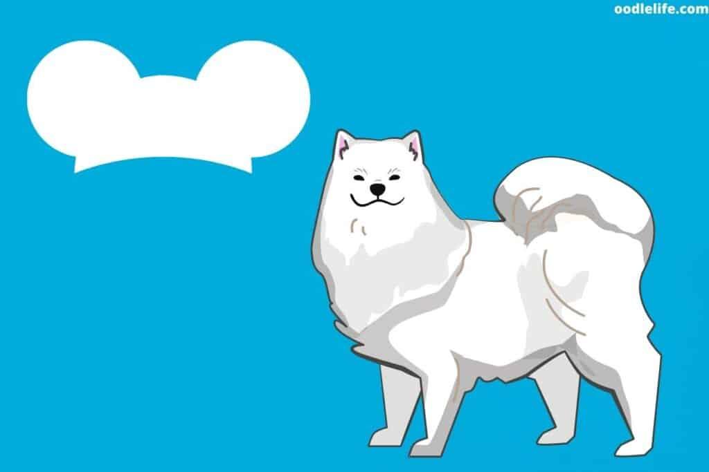 a dog drawn in disney stylw